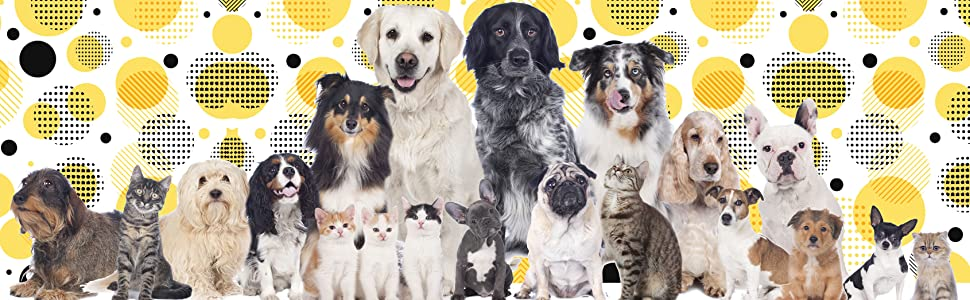 small medium large breed dogs and cats of all breeds and size