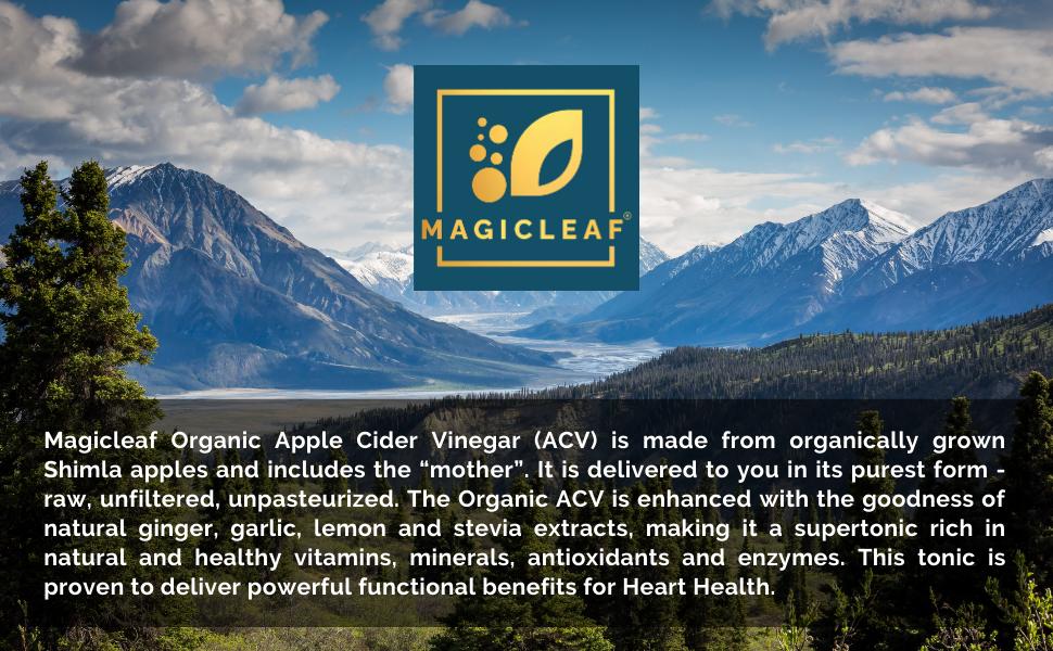 Magicleaf Applw Cider Vinegar
