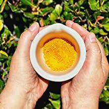 Green Tea Matcha Energy