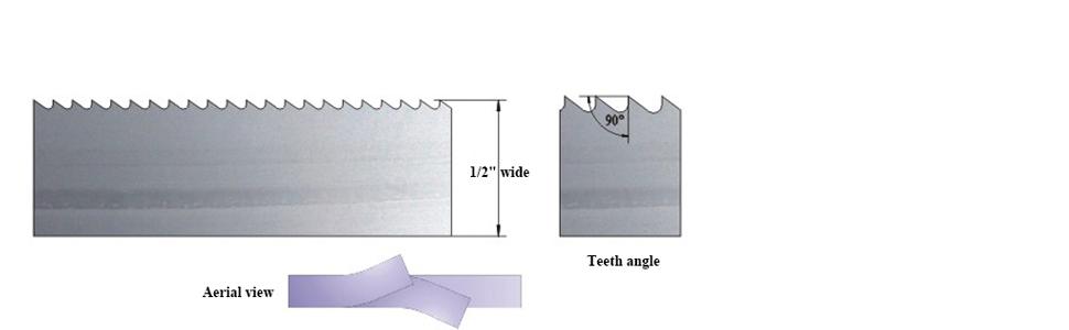 Teeth Information
