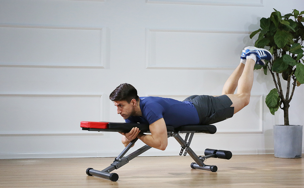 5-in-1 bench