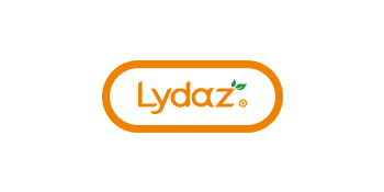 Lydaz flower garden building toy