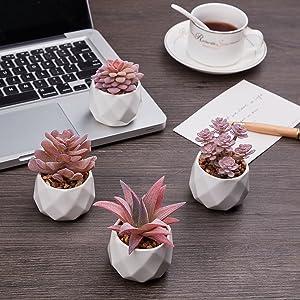 office bedroom bathroom shelf decor ceramic pots succulents faux flower
