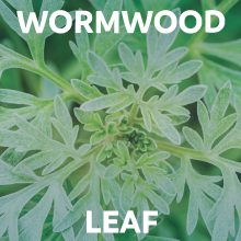 Wormwood Leaf capsules