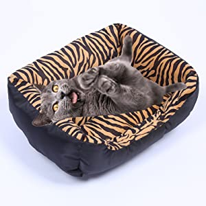 cat and dog bed