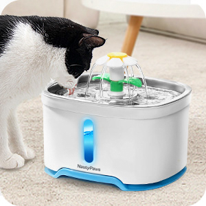 cat water fountain for cats and dogs