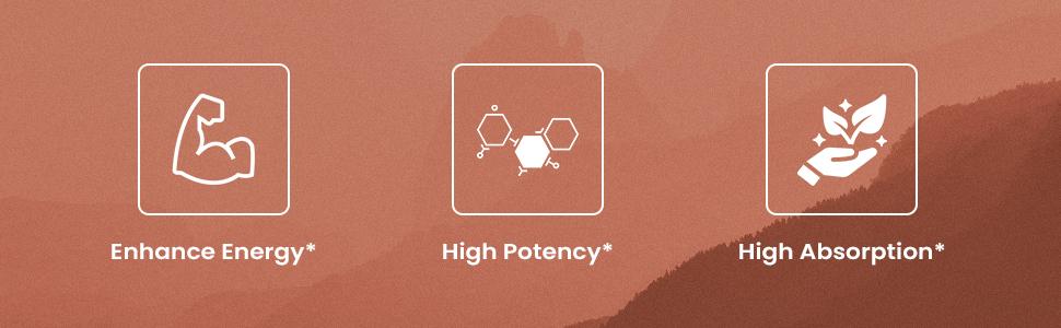 enhance energy high potency high absorption