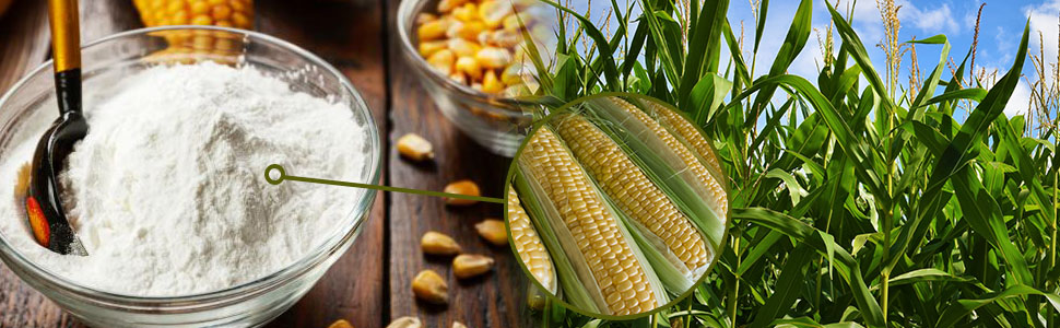 cornstarch, corn