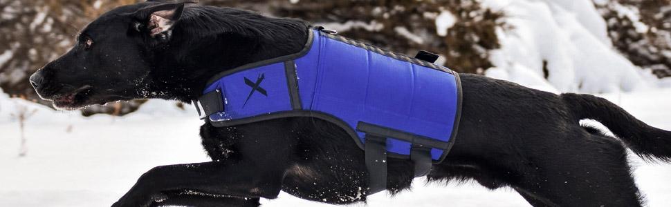 german shepherd vest for muscle