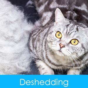 Pet Deshedding Brush