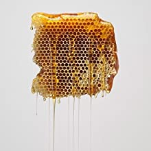 honey comb dripping with honey