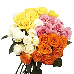assorted roses, fresh flowers, real roses