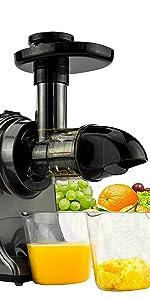 GREEN-PRESS Slow Juicer Sellerie Gemüse grünes