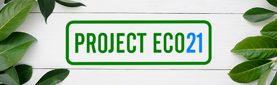 Project Eco21