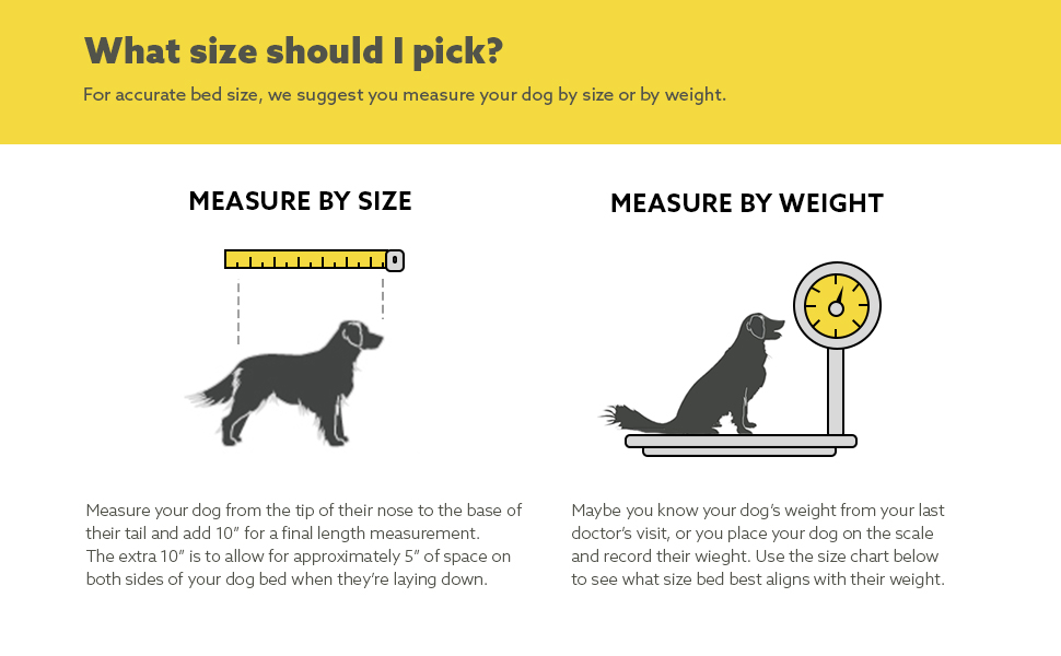 Measuring Your dog by size or weight