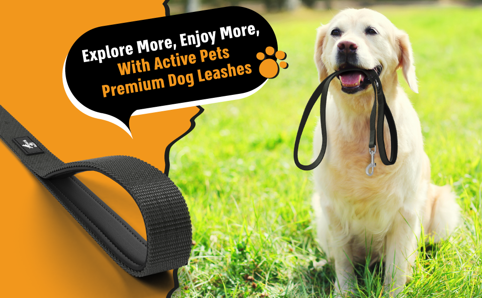 leash for medium dogs