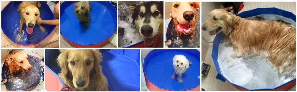 Foldable Dog Pet Pool Portable Kiddie Pool for Kids, PVC Bathing Tub, Outdoor Swimming Pool