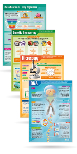 Set of 13 Biology Posters