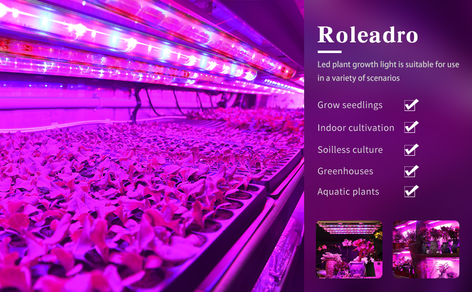 Roleadro Led Grow Light For Indoor Plants 6 Pack Led Grow Lights With Timer Full Spectrum Grow Lamp Plant Lights For Indoor Plants Tent Greenhouse