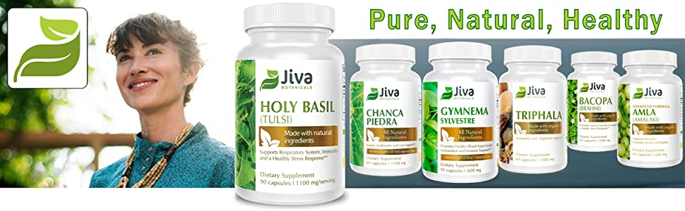 holy basil holy basil capsules tulsi seeds tulsi holy basil holy basil tulsi holy basil extract