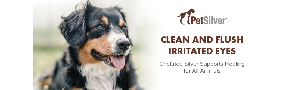 PetSilver Eye Wash to clean and flush irritated pet and animal eyes. Rapid healing, chelated silver