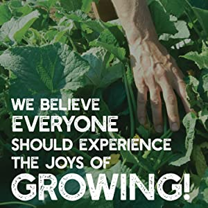 growing a better life mountain valley seed company true leaf market