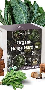 organic lettuce greens kit kale spinach loose leaf lettuce arugula red romaine seeds
