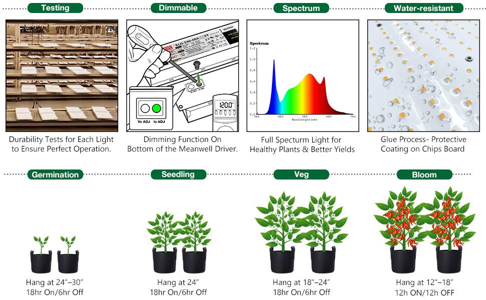 Spider Farmer SF 1000 LED Grow Light