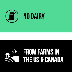dairy free protein powder, vegan protein powder, usa vegan protein powder, no dairy protein powder