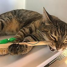 Tues Tamer Kitty Kraken Cat kitten toy birch wood wand elastic string fun save exercise pet play