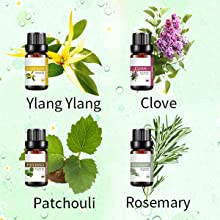 Ylang Ylang essential oil Patchouli essential oil Clove essentail oil Rosemary essential oil