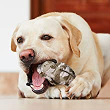 durable dog chew toys