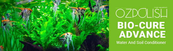 OZPOLISH Bio-Cure Advance by Aquatic Habitat