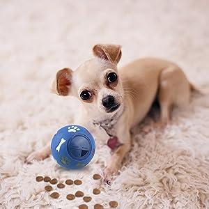 dog treat toy