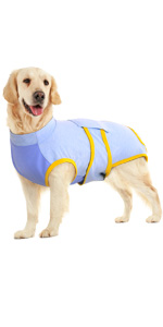 dog recovery suit after surgery
