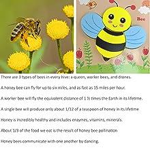 Air creatures