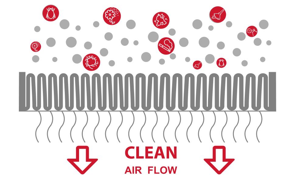 Allergy Air Flow