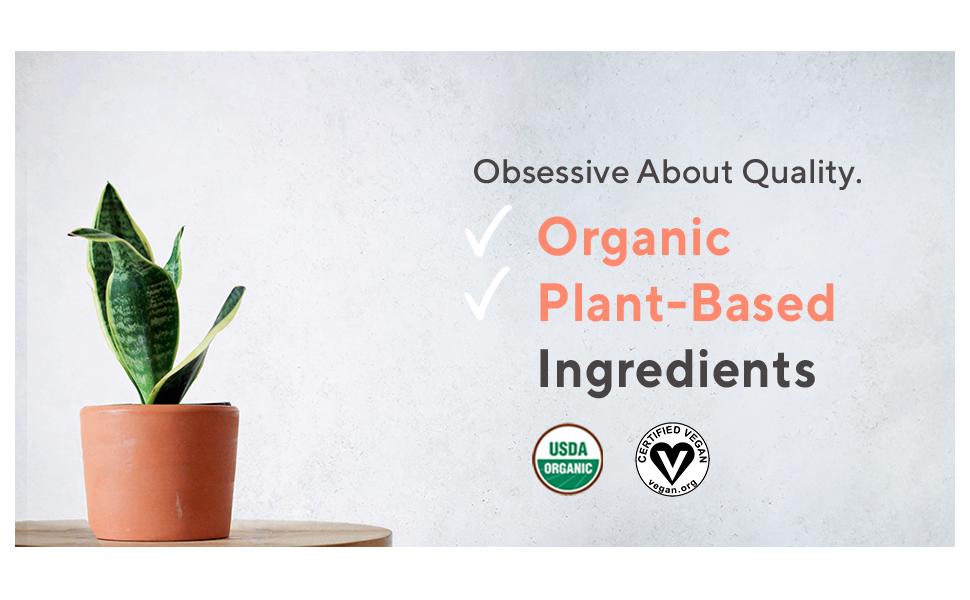 protein powder, organic, vegan, plant-based, chocolate, smoothie, supplements