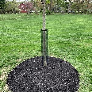 Rigid Plastic Mesh Tree Bark Guard Protector 5 Pack 24 Tall x 4 Diameter