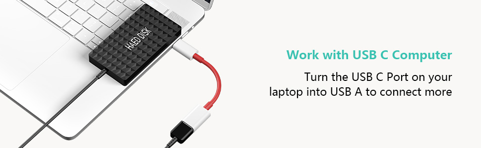 type c female to usb a male cable