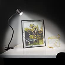 desk light with clamp