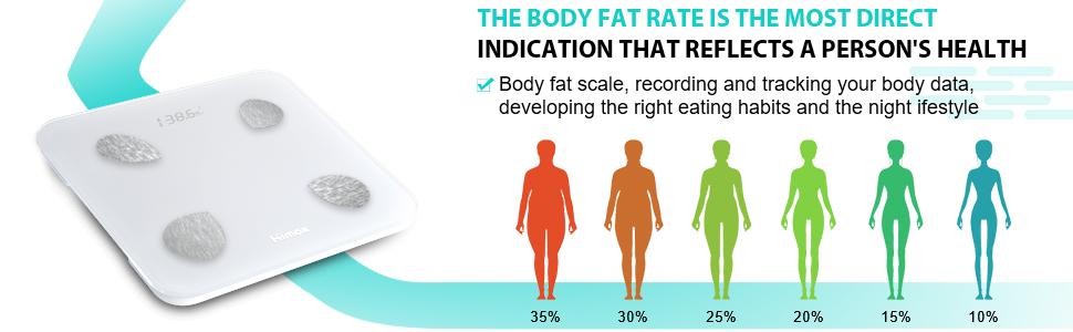 fat body scale