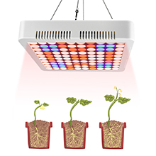 Led Grow Lights Aogled, Full Spectrum Plant Lights, Replace Traditional 600W 800W HPS/MH Lamps