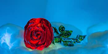 Incredible Love Gift Birthday Idea Crystal 24K Gold