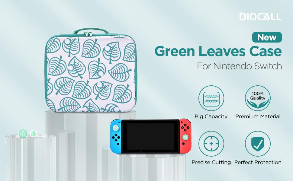 Big Green Case 1