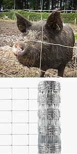 viele Gr/ö/ßen verzinkt casa pura Maschendrahtzaun f/ür Garten Drahtzaun aus Sechseckdrahtgeflecht mit Maschenweite 13 mm 75cm x 25m Balkon und Kleintiere