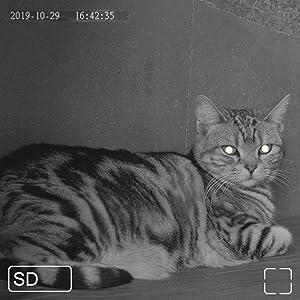 赤外線カメラ搭載