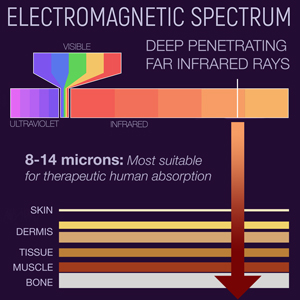 FIR Electromagnetic Spectrum Skin Dermis Tissue Muscles Bones Bone Deep Penetration Rays Sunshine