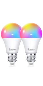 smart bulb 2 pack