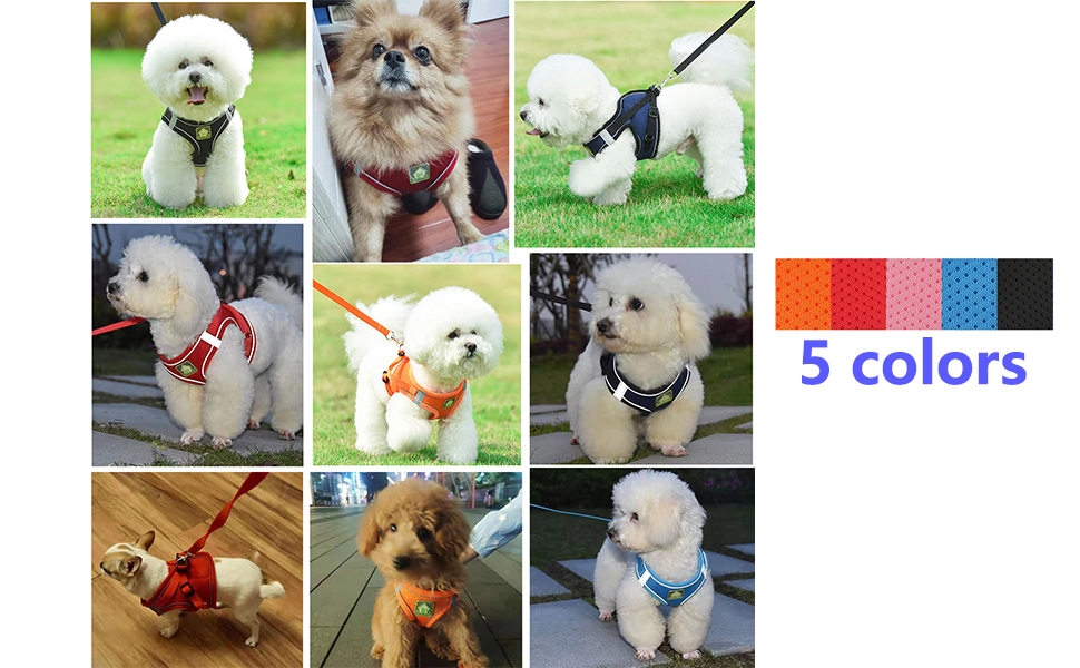 puppy harness for small dogs ,medium dog harness , puppy harness , dog harness no pull